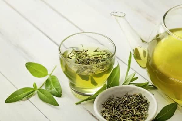 green tea best foods for weight loss