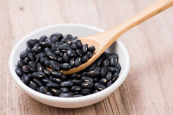 black beans high protein foods